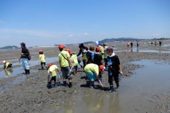 海の生き物調査